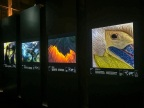 Celebrating Wildlife at the Natural History Museum